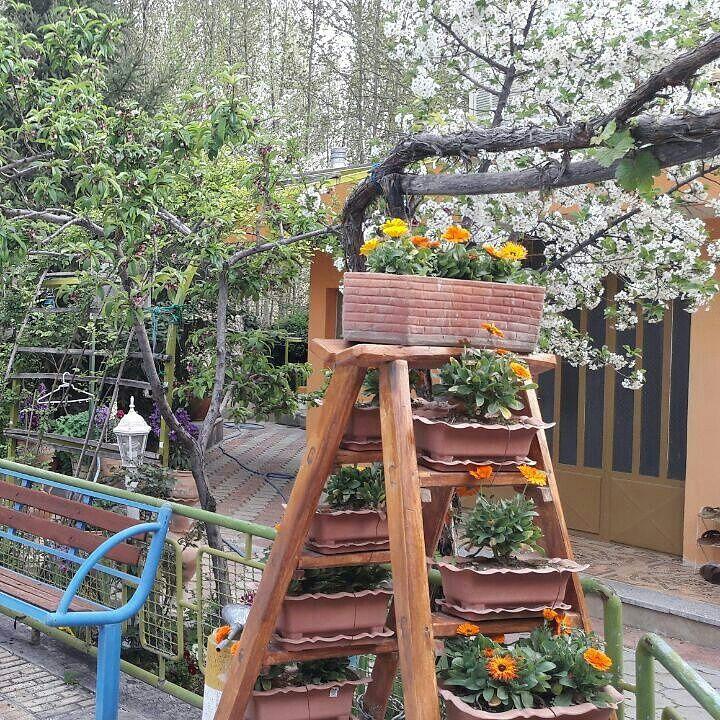 زیبایهای باغ بهادران