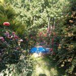 ویلا ساحلی دوخوابه در باغبهادران